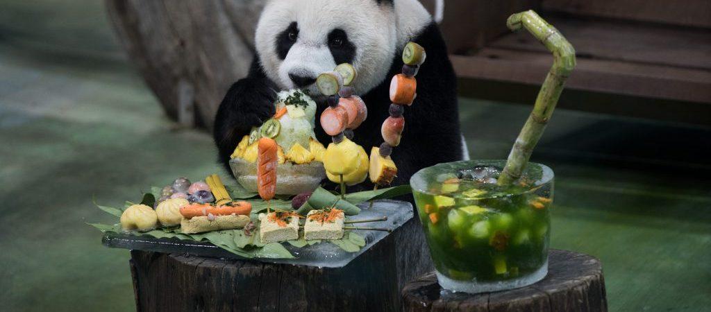 CHINA-TAIPEI-GIANT PANDA-YUAN ZAI-BIRTHDAY (CN)